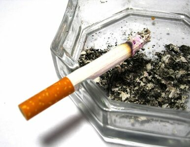 Senat odrzucił zakaz palenia w miejscach publicznych