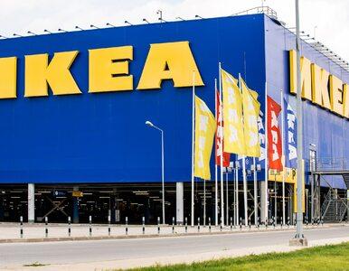 Ikea tylko pośrednikiem? Szwedzi otworzą pierwszy sklep z używanymi meblami