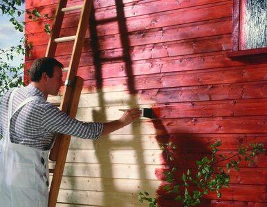 O impregnacji i konserwacji drewna. Nikodem Kowalski, ekspert marki Sadolin