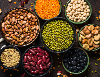 Naukowcy: Substancje antyodżywcze też są potrzebne w diecie