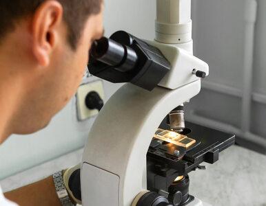Randomizowane i podwójnie zaślepione… o co chodzi? Co trzeba wiedzieć o...