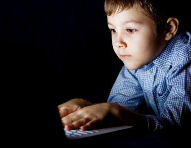 Microsoft pomoże zwalczać pedofilię w sieci. Jako broń posłuży Project...