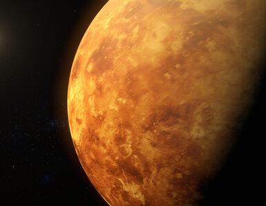 Wszyscy lecą na Marsa, a Rosja na Wenus. Roskosmos zapowiedział ambitny...