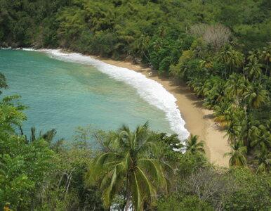 Tobago, czyli zamorskie kresy Rzeczpospolitej