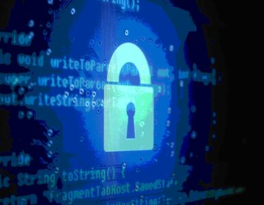 Polacy uważają, że prywatne dane są prywatne. I nie chcą ich ujawniać