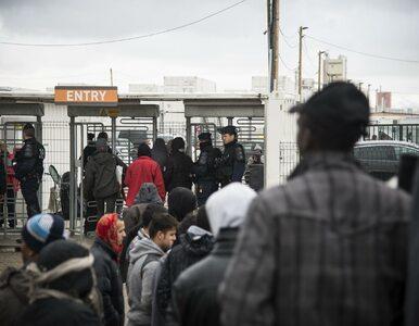 Migranci z obozu w Calais zaatakowali policjantów