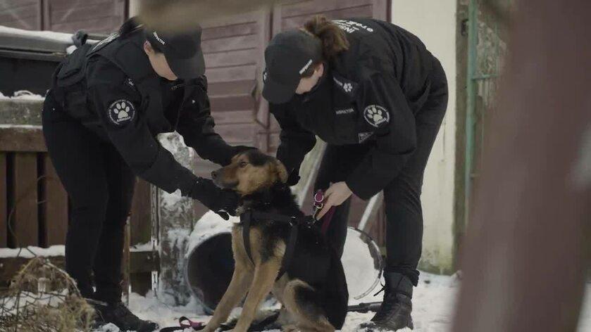 Inspektorzy OTOZ Animals