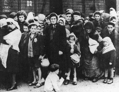 """73 lata temu wyzwolono obóz Auschwitz. """"Rozmiarów zbrodni nie domyślało..."""