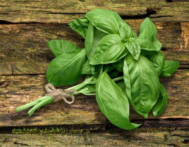 Naturalne produkty na nadkwasotę żołądka