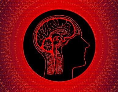 Jak dbać o mózg? Niektórych chorobom można zapobiegać
