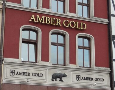 Gdański Sąd Okręgowy chce oddać sprawę Amber Gold