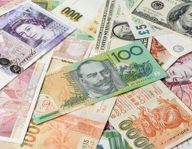 Quiz. Dolar, frank, lari i balboa – wiesz z jakich krajów pochodzą te...