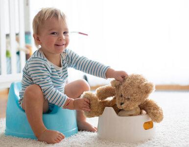 Odpieluchowanie dziecka: dlaczego nie warto zaczynać za szybko i jak...