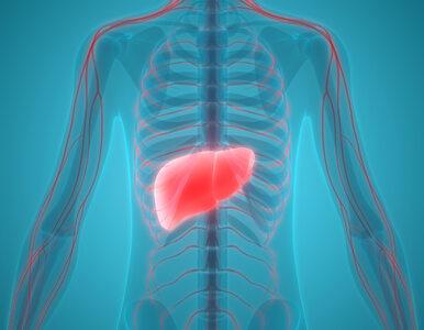 4 najgorsze choroby wątroby. Tych objawów nie wolno ignorować