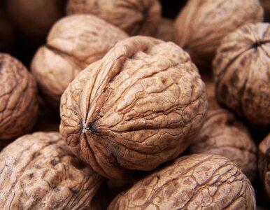 Dieta bogata w orzechy zapobiega alergiom?
