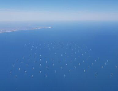 Porzucając węgiel, trzeba spojrzeć na morze