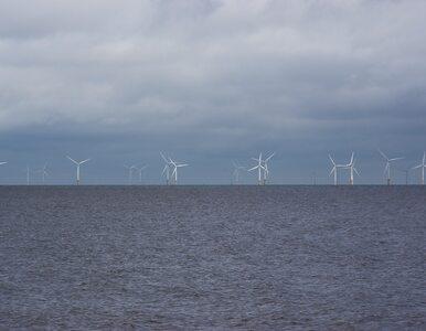 Energia z morskiej farmy nawet dla miliona gospodarstw domowych