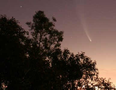 Pierwsza z dwóch komet minęła Ziemię. Druga…