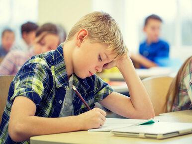 Ekspert z KUL ostro o reformie edukacji: Prawdopodobnie chodzi o...