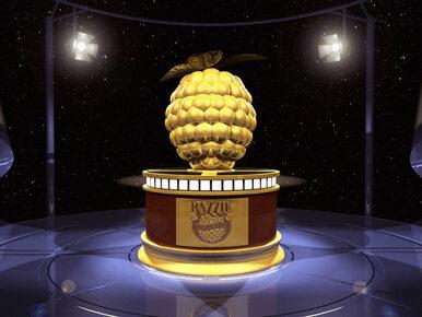 Złote Maliny 2017 - zwycięzcy