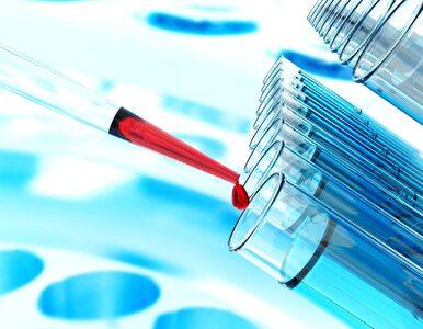 Test PAPP-A: co wykrywa i kiedy trzeba wykonać badanie?