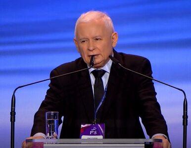 """Kaczyński ostro o """"tłustych kotach"""". Ta ustawa ukróci zapędy polityków PiS"""