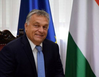 Orban: Unia Europejska powinna założyć wielkie miasto uchodźców