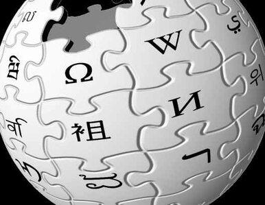 Politechnika redaguje Wikipedię