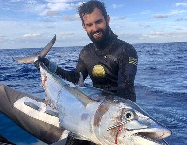 Najdroższa ryba świata dostrzeżona w niezwykłym spektaklu. Jej cena...