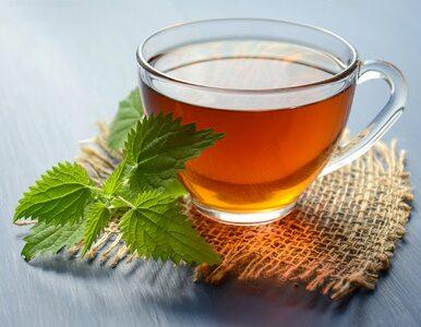 Zielona herbata działa inaczej w zależności od pory, w której ją pijesz....