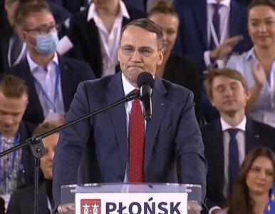 Radosław Sikorski zwrócił się do dziennikarza TVP: Nie trzeba podpisywać...