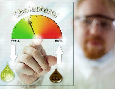 5 mitów na temat cholesterolu, w które większość z nas ślepo wierzy