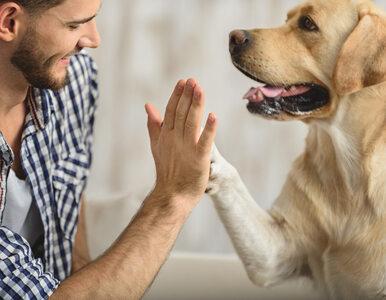 Psy i ich właściciele są podatni na tę samą chorobę