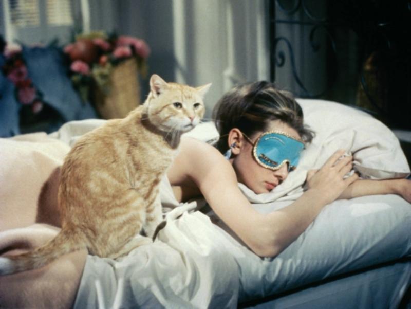 """Jak miał na imię kot głównej bohaterki filmu """"Śniadanie u Tiffany'ego""""?"""