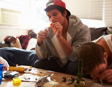 Nastolatki przestają obawiać się marihuany i haszyszu. Mamy poważny...