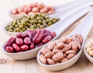 Dietetyk: Oto 10 najlepszych źródeł białka pochodzenia roślinnego....
