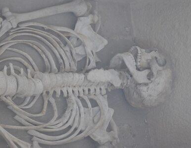 Odkryto grób kobiety-kowala sprzed 4000 lat