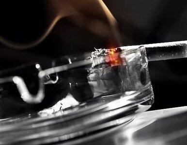 Naukowcy sprawdzą, czy e-papierosy szkodzą zdrowiu