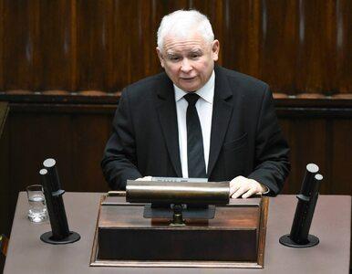 PiS wciąż na czele, Koalicja Obywatelska traci. Najnowszy sondaż