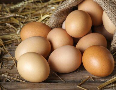 Co się stanie, gdy zaczniesz jeść jedno jajko dziennie?