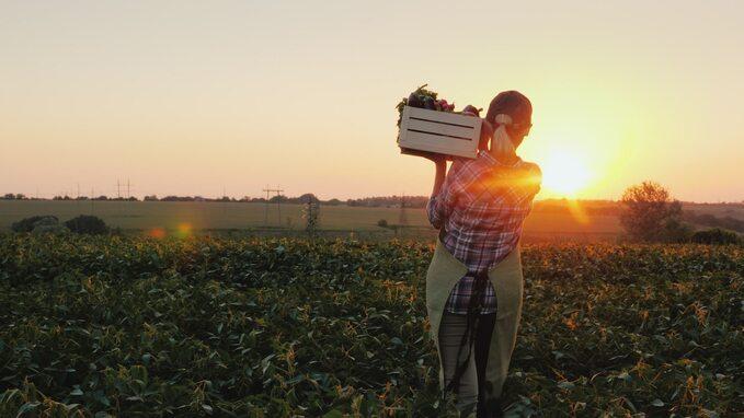 Liczba gospodarstw ekologicznych wPolsce zaczyna spadać