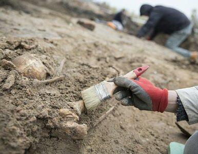 Szczątki kilkudziesięciu osób odkryto na Cytadeli Warszawskiej