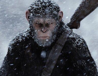 """Będzie kolejna odsłona """"Planety małp"""". Nakręci ją reżyser """"Więźnia..."""
