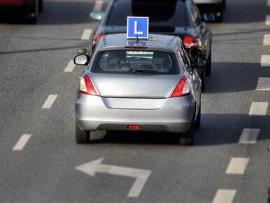 Są plany zmian w kursach na prawo jazdy. Egzamin ma być zdawany co rok