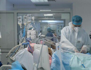 Wąsy tlenowe, ECMO, respirator. Pulmonolog z oddziału covidowego...
