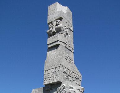 Pomnik na Westerplatte, a obok niego... kot. Kontrowersyjny fotomontaż w...