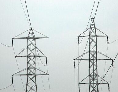 Brakuje jednak rządowej strategii w sprawie polityki energetycznej