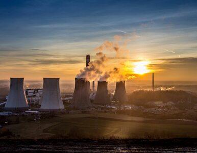 Świat porzuca węgiel? Największy od 40 lat spadek produkcji energii z...