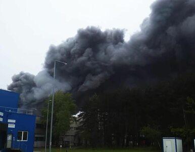 Pożar na terenie Elektrowni Bełchatów. Straż pożarna opanowała sytuację