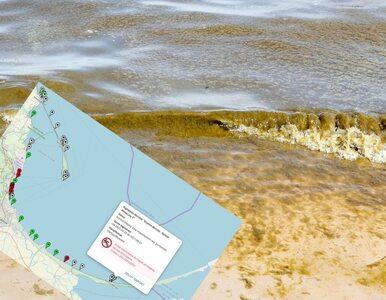 Czerwone flagi nad Bałtykiem. Sanepid zamknął dziesięć kąpielisk